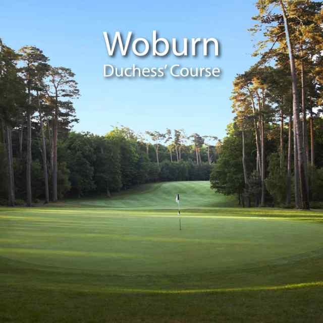 Woburn Duchess